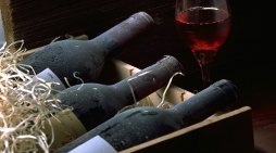 Wine Investment For Beginners