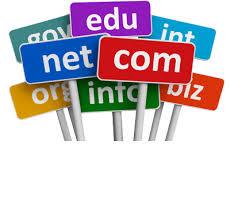domain investing