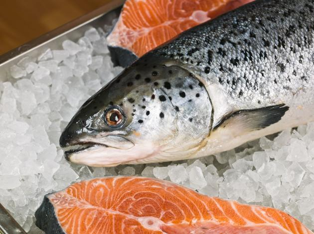 Price for salmon is now more expensive than oil